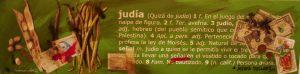 JUDÍA
